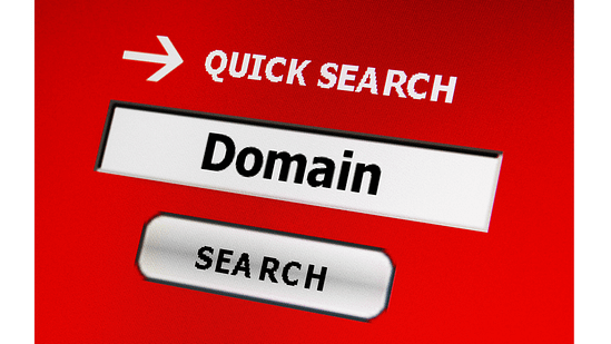 find domain name