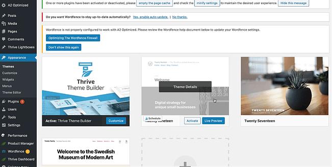 Delete WordPress Themes