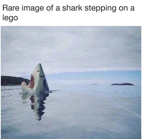 shark skill test meme